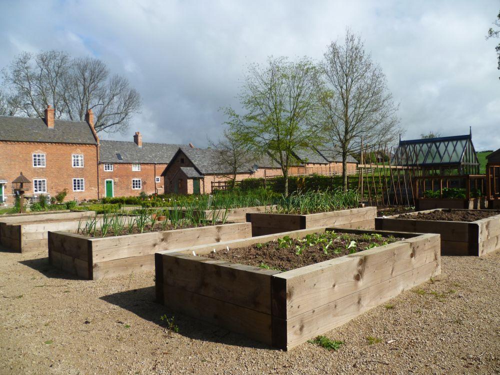 Depth Vegetable Garden Box