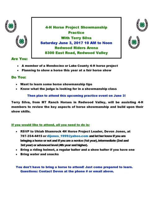 4H horse project showmanship clinic
