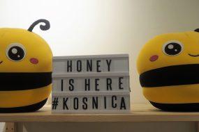 Oh Honey, Let's go to Kosnica Cafe