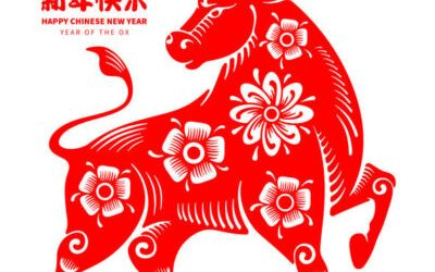 Which Chinese Zodiac Has the Best Financial Outlook for 2021?