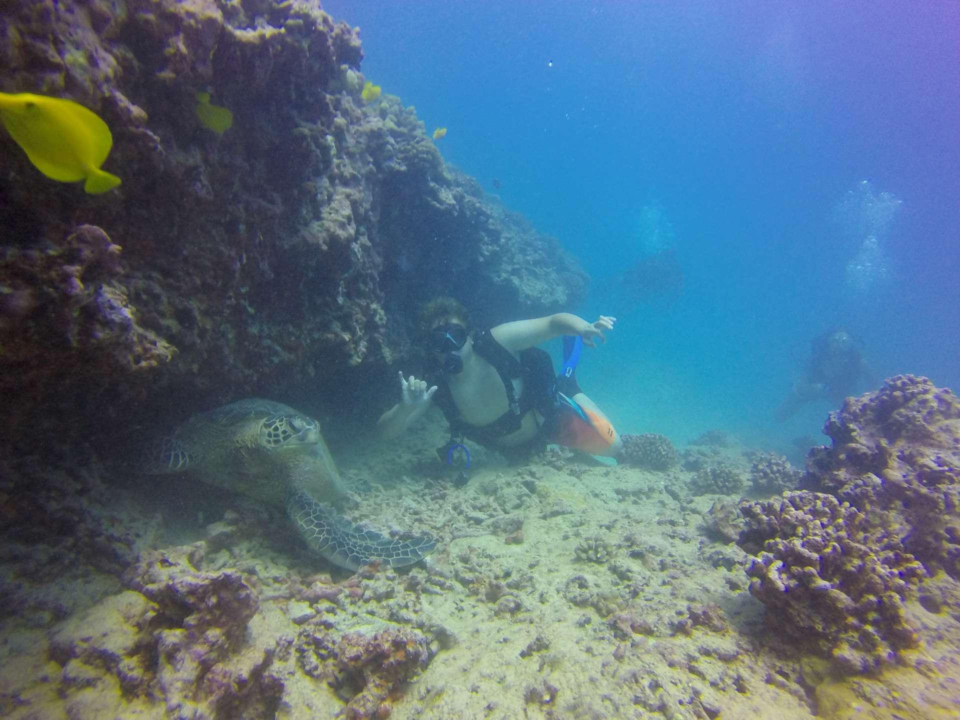 Hawaii Scuba Diving 10 01 2016