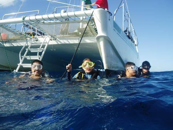 Hawaii Scuba Diving Prices Scuba Diving Hawaii Cost