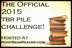 2015 TBR Pile Challenge - RoofBeam