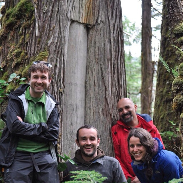 Three men and one woman Raincoast staff smile and pose beside the trunk of a tree in the Great Bear rainforest