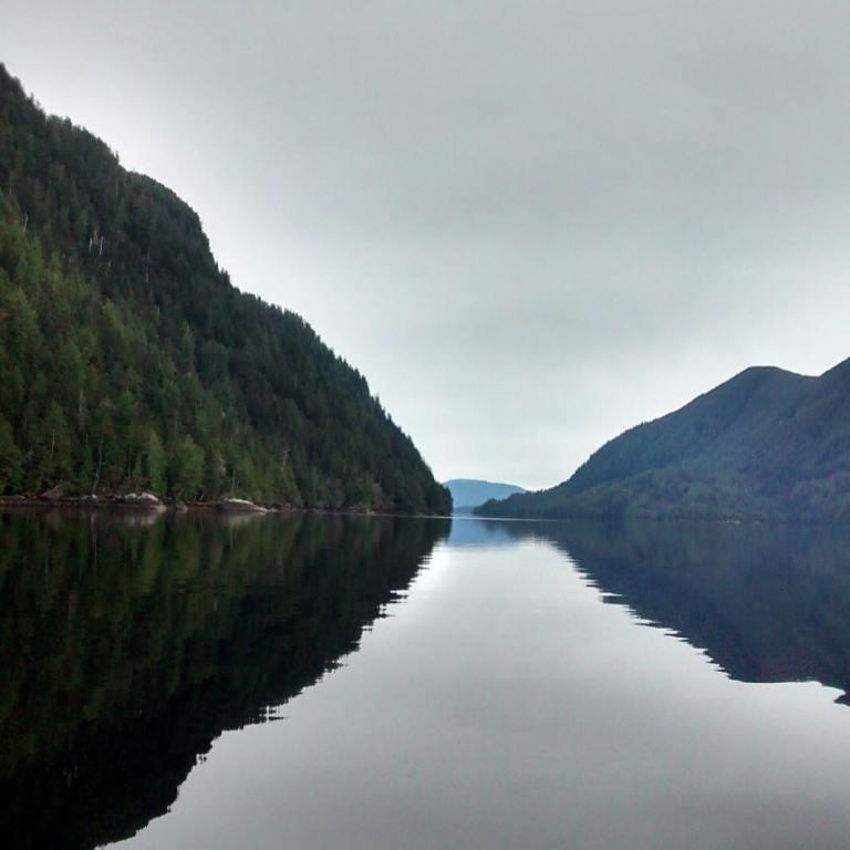 Gazing at Great Bear Rainforest majesty
