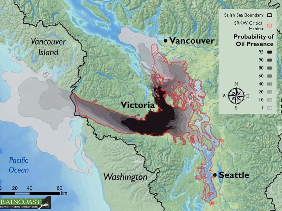 A map created by Raincoast showing probability of oil spill overlaid with the habitat of oracs indicates a great deal of overlap between the two