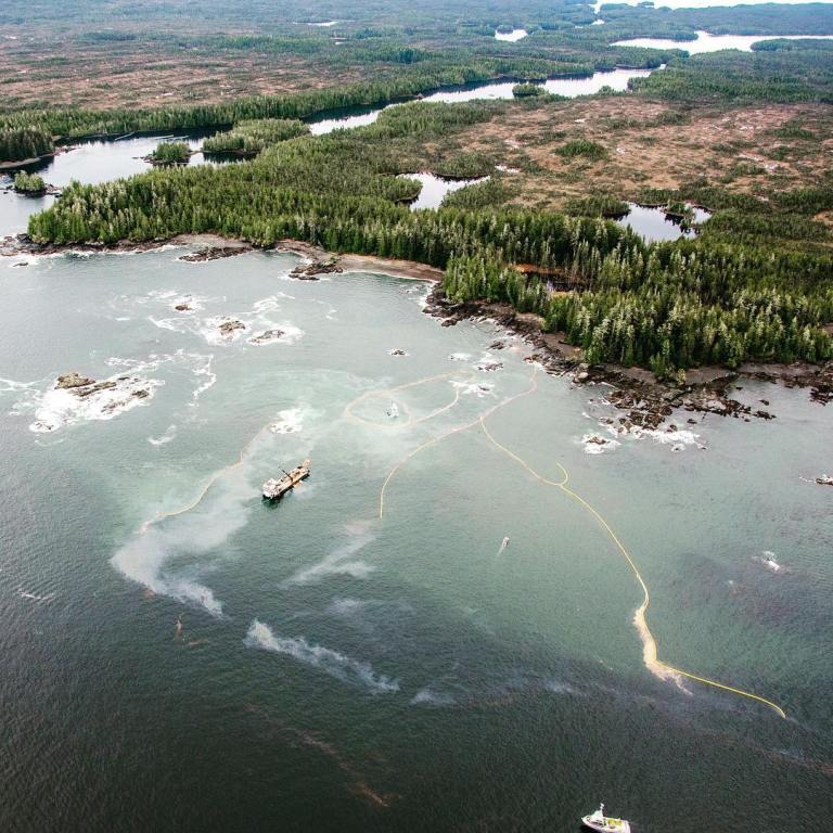 Continued impacts of the Nathan E Stewart oil spill