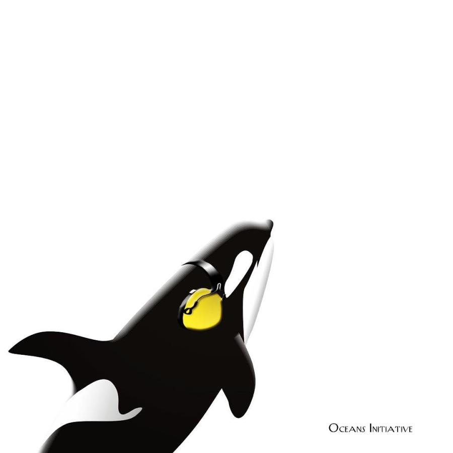 Painting based on photo of an orca whale with a white background