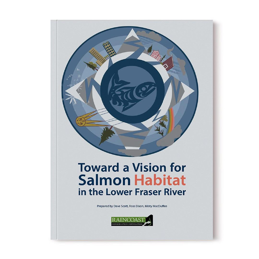 Cover art for the report with report title Towards a Vision for salmon habitat in the Lower Fraser River in text under a circle in shades of blue with a smaller circle containing a salmon and the larger ring of the outer concentric circle containing buildings and ecosystem aspects