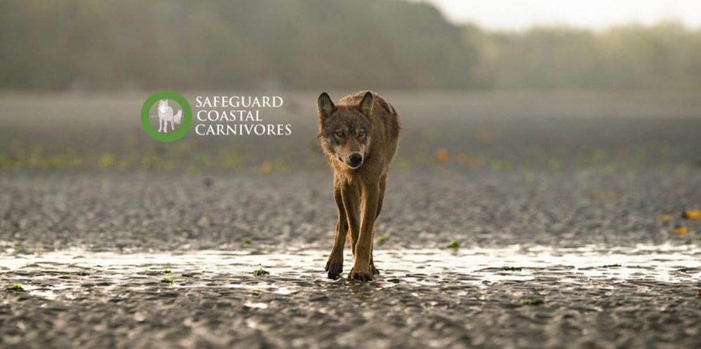 Safeguard Coastal Carnivores
