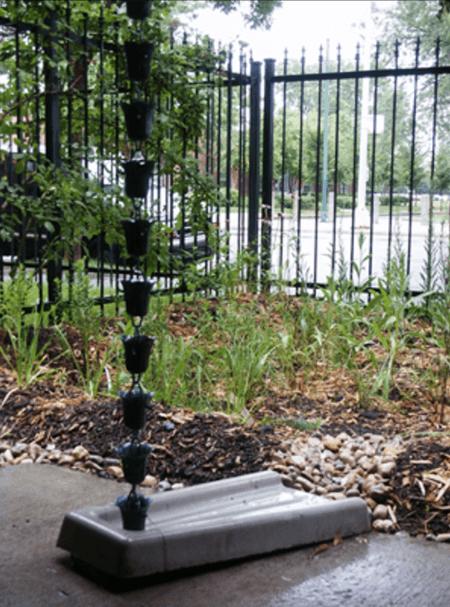 Rain garden in an urban environment with rain chain