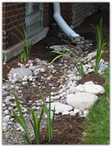 Downspout to rain garden