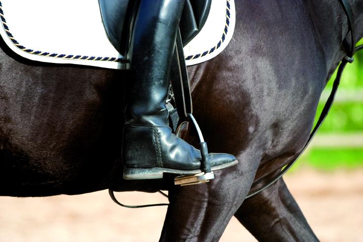Horse-arena-rainwater-usage