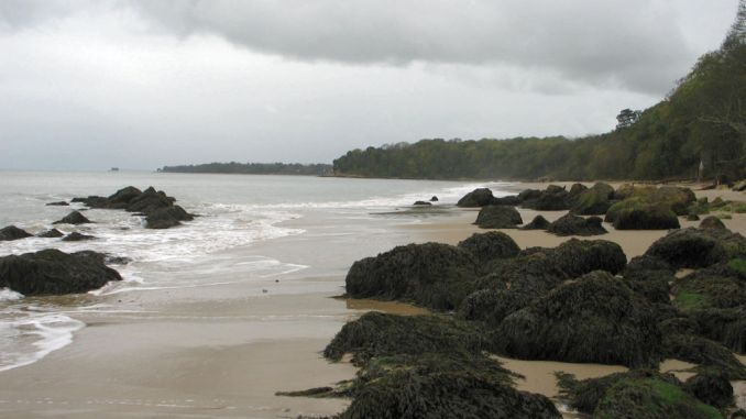 Featured - Priory Bay Beach - Isle of Wight
