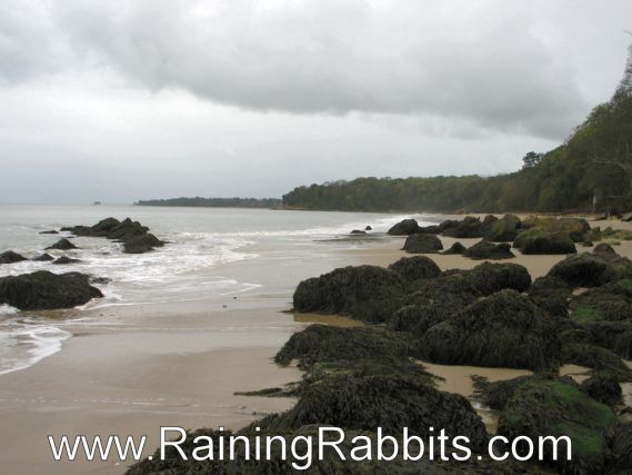 Priory Bay Beach - Isle of Wight