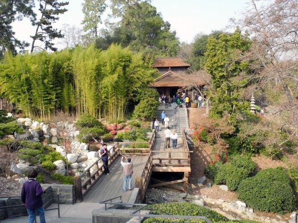 desert japanese garden RainyDayDestinations: Huntington Library Visit by Kristin