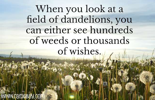 positive: a field of dandelions with the text, when you look at a field of dandelions you can either see hundreds of weeds or a thousand wishes.