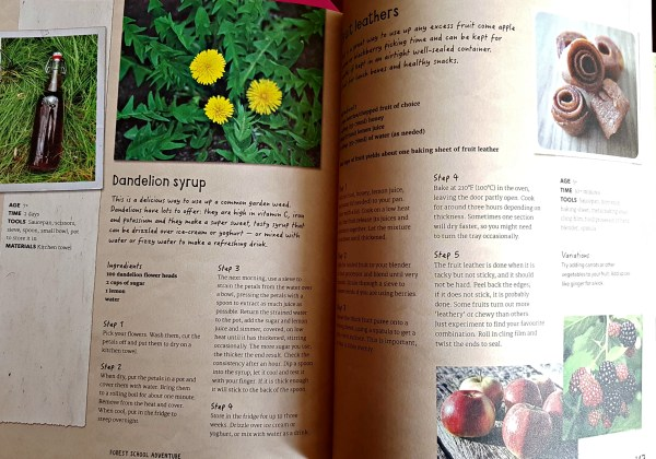 pages from the book showing how to make syrup from dandelions