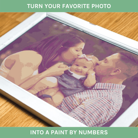 Turn your favourite photo into a paint by numbers with Winnies Picks