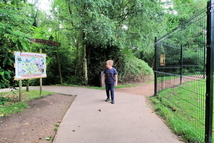 a boy walking along a path checking the map to see where he is going. lots of wildlife in the background