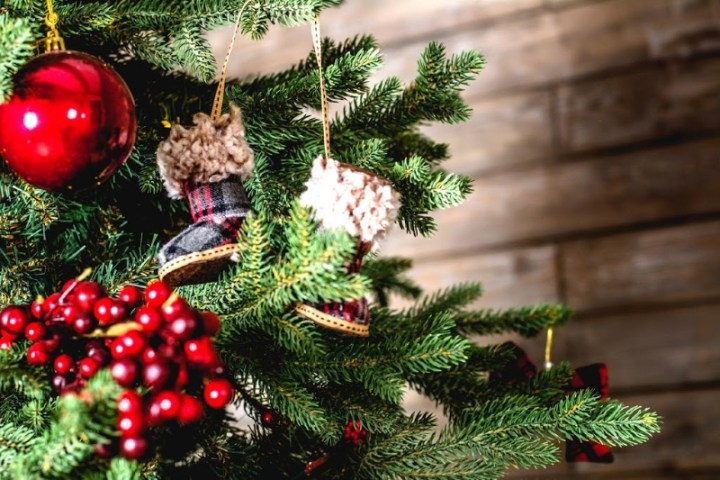 christmas tree branch with ornaments. Christmas 2019