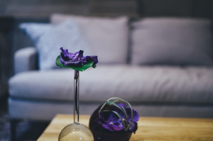 photo of a sofa in the background with flowers on the table