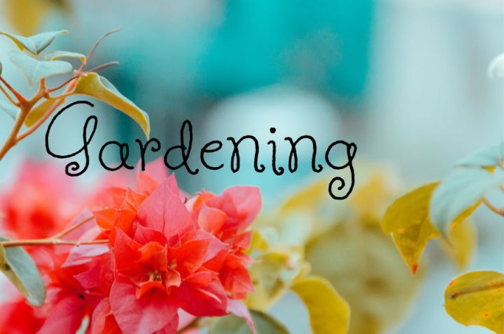 gardening, written over the background of a pretty flower.