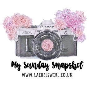 image shows a drawing of a camera with flowers. A badge for My sunday Snapshot from Rachel Swirl blog.