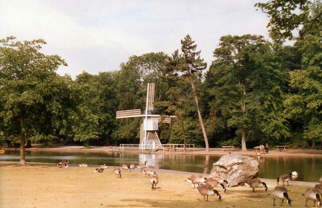 old photograph of a wooden windmill next to a lake from Cannon Hill Park Tulip Festival.
