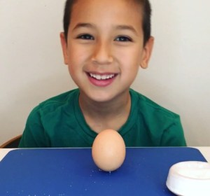 How to make an egg stand up straight