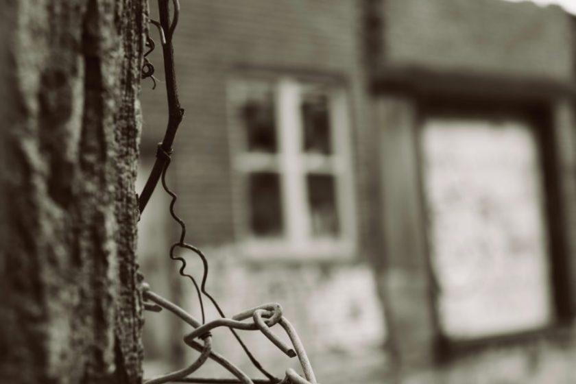 Photo by Frédéricke Boies on Unsplash
