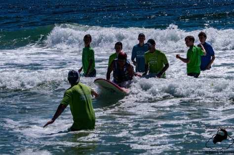 Random Surfing
