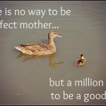 duckgoodmom