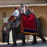 Elephant Ride at Amber Fort in Jaipur