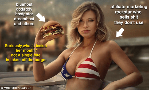 affiliate marketers are like hot models who sell burgers and make people fat