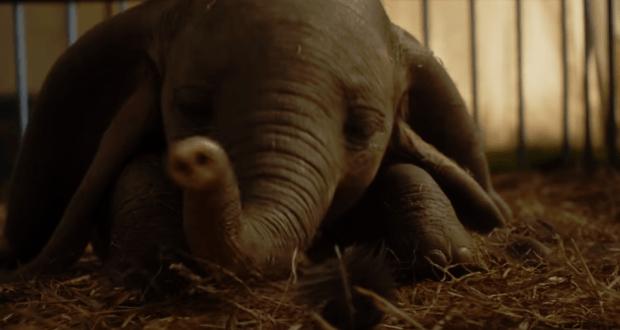 Megérkezett az élőszereplős Dumbo mozi első előzetese