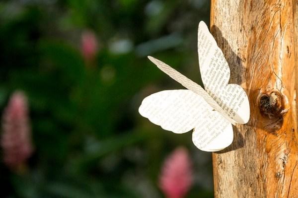 Ecriture poème papillon nature