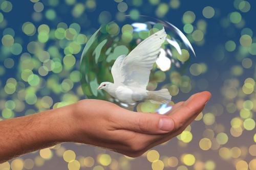 Colombe symbole de la paix bulle main