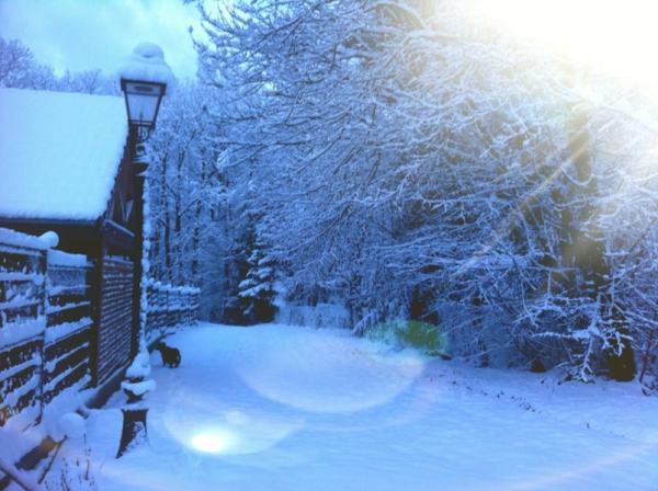 Chemin recouvert de neige, rayon de soleil