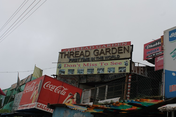 Ooty thread garden