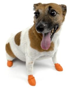 paw-z-walmart-dog-socks