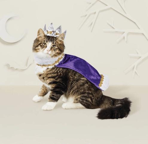 King or Queen Cat Costume