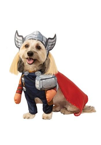 Avengers Thor Pet Costume