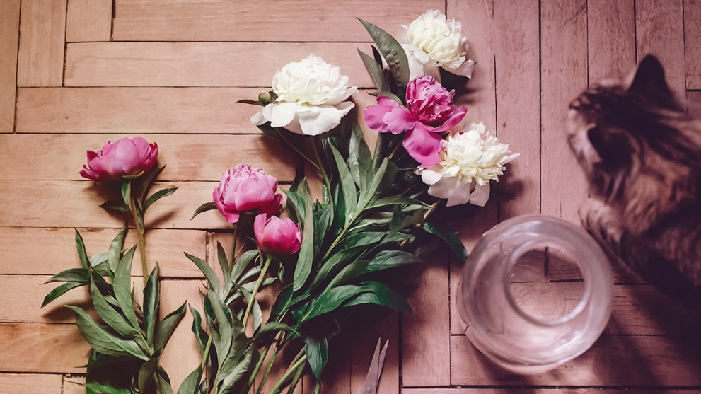 How to Display Flowers in Creative, Budget-Friendly Ways This Spring