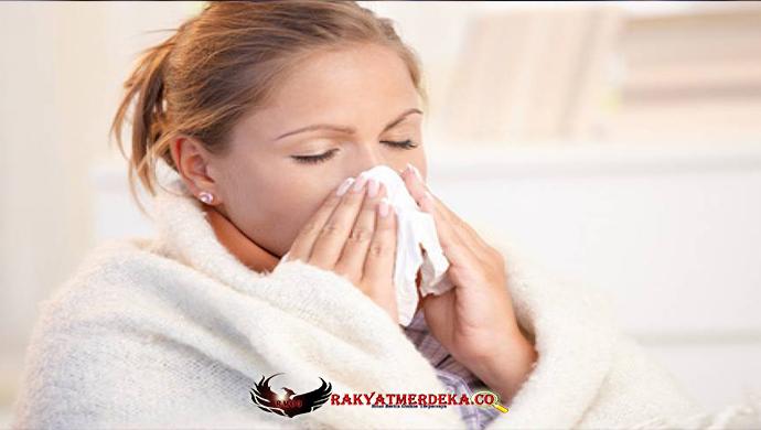 Pada Saat Flu Datang, Segeralah Untuk Meminum Teh Hitam