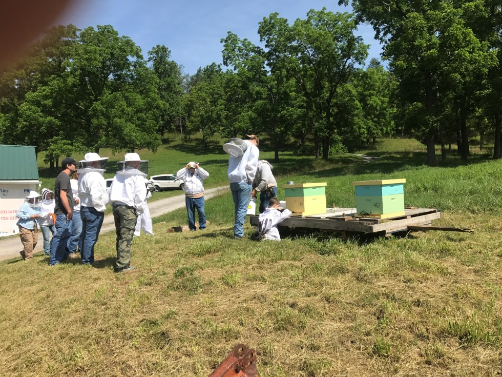ABC Open Hive Demonstration Workshop
