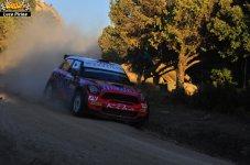 450 Rally Itlaia Sardegna 2013 WRC Luca Pirina