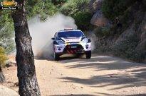 57 Rally Itlaia Sardegna 2013 WRC Luca Pirina