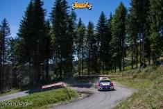 rally-s-martino-2013-4