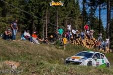 rally-s-martino-2013-49